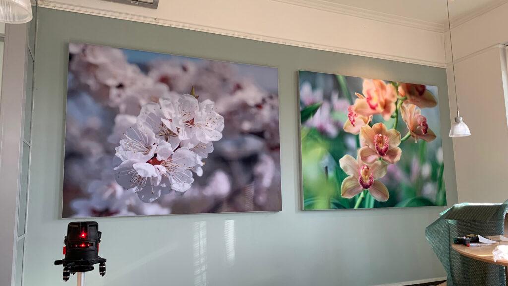 akoestisch fotopaneel orchidee wand